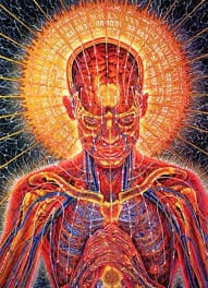 Le 4 fasi della trasmutazione alchemica